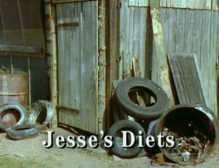 Episode 1, Jesse's Diets - broadcast