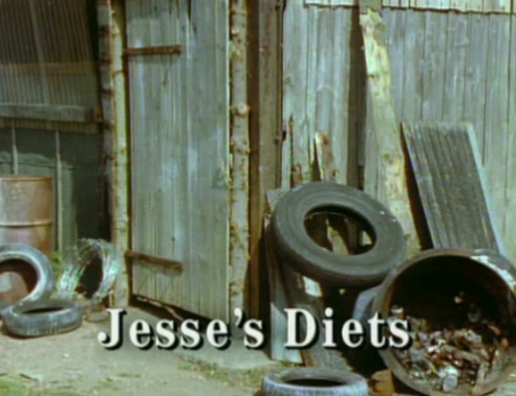 Episode 1, Second Jesse's Diets - broadcast